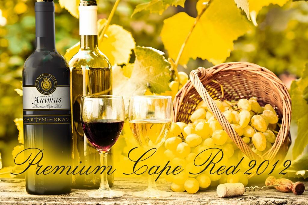 Thưởng thức rượu vang Nam Phi