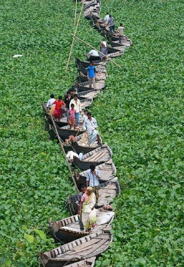 Độc đáo cây cầu thuyền ở Bangladesh