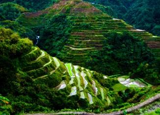 Ruộng bậc thang 2000 năm tuổi