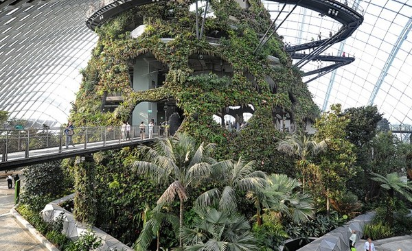 khu vườn nhân tạo singapore