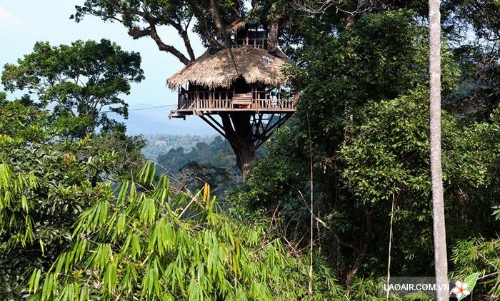 Khu bảo tồn thiên nhiên Bokeo nổi tiếng với những ngôi nhà trên cây