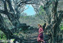 Khung cảnh thiên nhiên ở Wat Phu